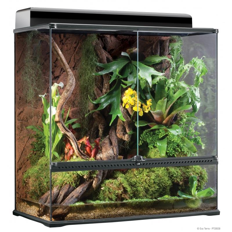 Exo Terra terrarium szklane Large X-Tall 90x45x90