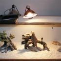 Trixie Basking Spot-Lamp 35W (żarówka grzewcza)