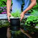 Kosz do roślin wodnych OKRĄGŁY 22x12cm