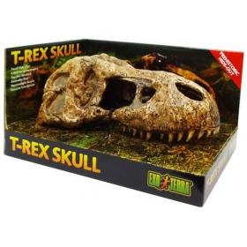 EXO TERRA T-Rex skull (czaszka dinozaura)
