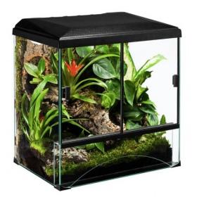Diversa Terraset Forest 30 zestaw terrarium tropikalne