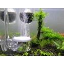 Szklany Dyfuzor CO2 JAPAN STYLE - 50mm