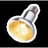 <b>Repti-Zoo SuperSun 160W - lampa żarowo-rtęciowa</b><br /><br /><p>Repti-Zoo SuperSun to nowoczesnej generacjilampa żarowo-rtęciowa łącząca w sobie właściwości żarówki grzewczej jak i żarówki UVB.Ze względu na swoją moc grzewczą jak i wysoką wartość emisji fal UV idealnie nadaje się do wybiegów o charakterze pustynnym i półpustynnym.Podczas korzystania z lampy SuperSun nie zachodzi potrzeba instalacji dodatkowych żarówek grzewczych lub UVB czy świetlówek.</p>
