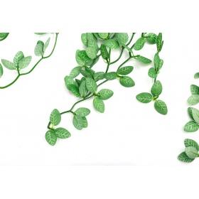 <b>Repti-Zoo roślina wisząca 40cm - Fitonia</b><br /><br />&lt;p&gt;&lt;span&gt;Sztuczne rośliny producentaRepti-Zoo doskonale sprawdzają się w każdym rodzaju terrariów, tworząc miejsca zacienione oraz miejsca kryjówek. Główną zaletą tego produktu jest jego naturalny wygląd oraz brak jakiej kolwiek trudności w utrzymaniu takiej rośliny.&lt;/span&gt;&lt;/p&gt;