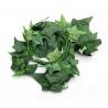 <b>Repti-Zoo roślina wisząca 190cm - Hedera</b><br /><br /><p><span>Sztuczne rośliny producentaRepti-Zoo doskonale sprawdzają się w każdym rodzaju terrariów, tworząc miejsca zacienione oraz miejsca kryjówek. Główną zaletą tego produktu jest jego naturalny wygląd oraz brak jakiej kolwiek trudności w utrzymaniu takiej rośliny.</span></p>