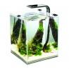 <b>Zestaw Aquael Shrimp Set 10l - Black</b><br /><br /><p><span>Krewetkarium Shrimp Set o pojemności 10l znanej firmy Aquael. Zestaw ten jest kompletnie wyposażonym zbiornikiem z filtrem, oświetleniem i grzałką. Jest on dedykowany zarówno dla osób rozpoczynających swoją przygodę z akwarystyką jak i dla osób ze sporym doświadczeniem.</span></p>
