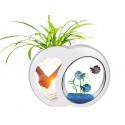 SunSun YB-02 - zestaw akwarium