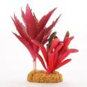Yusee Roślina - Kaktus Liściasty Czerwony 17x13x16