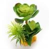 <b>Yusee Roślina - Grubosz Młody 16x14x14</b><br /><br /><p>Rośliny sztuczne Yusee są jednymi z najładniejszych na rynku, dzięki ręcznej końcowej fazie produkcji. Spektakularny końcowy efekt wizualny dopełnia wyjątkowa struktura naturalny kształt i mocne żywe kolory.<br />Produkty Yusee charakteryzują się niezwykłą wytrzymałością oraz odpornością na działanie wody i wysokiej temperatury.</p>