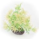 Yusee Roślina - Moczarka wys. 12-15cm