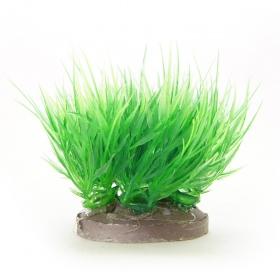 <b>Yusee Roślina - Trawnik Eleocharis wys. 4-6cm</b><br /><br />&lt;p&gt;Rośliny sztuczne Yusee są jednymi z najładniejszych na rynku, dzięki ręcznej końcowej fazie produkcji. Spektakularny końcowy efekt wizualny dopełnia wyjątkowa struktura naturalny kształt i mocne żywe kolory.&lt;br /&gt;Produkty Yusee charakteryzują się niezwykłą wytrzymałością oraz odpornością na działanie wody i wysokiej temperatury.&lt;/p&gt;