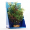<b>Yusee Roślina - Kabomba Czerwona 20cm</b><br /><br /><p>Rośliny sztuczne Yusee są jednymi z najładniejszych na rynku, dzięki ręcznej końcowej fazie produkcji. Spektakularny końcowy efekt wizualny dopełnia wyjątkowa struktura naturalny kształt i mocne żywe kolory.<br />Produkty Yusee charakteryzują się niezwykłą wytrzymałością oraz odpornością na działanie wody i wysokiej temperatury.</p>