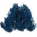 Secret Live Moss Sapphire Blue - Mech Żywy porcja 5g
