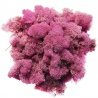 <b>Secret Live Moss Lavender Violet - Mech Żywy porcja 5g</b><br /><br /><p>Jest to całkowicie bezobsługowy produkt, który nie wymaga podlewania, naważania, przycinania. Nie wymaga także światła. Mech został odpowiednio spreparowany nie rośnie i nie ulega zmianom koloru czy struktury. Nadaje się do terrarium suchego i wilgotnego oraz wiwarium czy paludarium.</p>