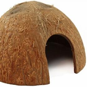 <b>Terrario CocoCave L - połówka kokosa duża</b><br /><br />&lt;p&gt;&lt;span&gt;Terrario CocoCavejest w pełni naturalnym i bezpiecznym wyposażeniem terrarium. Stanowi doskonałą kryjówkę / jaskinie dla wszystkich owadów, pająków, gadów i gryzoni. Produkt jest odporny na wysokie temperatury oraz wilgotność. Nie posiada sztucznych barwników czy konserwantów.&lt;br /&gt;&lt;/span&gt;&lt;/p&gt;