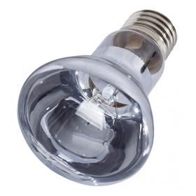 """<b>Repti-Zoo Neodymium Daylight 75W - żarówka grzewcza neodymowa</b><br /><br /><p><span style=""""font-family: verdana, geneva;"""">Neodymowa lampa grzewcza producentaRepti-Zoo emituje światło o barwie o wiele bardziej zbliżonej do światła słonecznego niż ma to miejsce w przypadku tradycyjnych żarówek grzewczych, dzięki czemu wystrój wybiegu wygląda bardziej naturalnie. Dodatkowo żarówka emituje promieniowanie UVA wpływając na naturalną aktywność zwierzęcia.</span></p>"""
