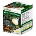 Repti-Zoo Beam Spot 150W - żarówka grzewcza punktowa