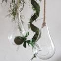 Urban Jungle - Hanging Garden II M - słoik wiszący