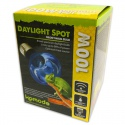Komodo Daylight 50W - żarówka grzewcza 3w1