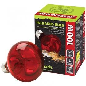Komodo Infrared 75W - żarówka grzewcza podczerwona
