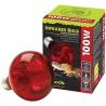 <b>Komodo Infrared 75W - żarówka grzewcza podczerwona</b><br /><br /><p>Komodo Basking Sun to doskonałe połączenie punktowej żarówki grzewczej z podczerwoną. Dzięki zwiększonej dawce podczerwieni żarówka w 90% wykorzystuje moc elektryczną w emisję ciepła. Pozostałe 10% w emisje światła o szerokim spektrum barw. Basking Spot dodatkowo emituje fale UVA oraz jednocześnie tworzy wyspę ciepła z ogrzewaniem ogólnym. Jest to jedyna żarówka grzewcza o tak licznychzaletach.</p>