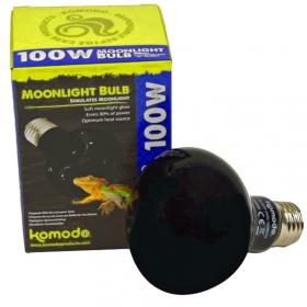 Komodo Moonlight 75W - nocna żarówka grzewcza