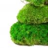 """<b>Natural Forest Moss - prawdziwy mech naturalna zieleń</b><br /><br /><p>Duża kępka prawdziwego mchu leśnego, pochodzącego z północnych terenów Kanady. Pochodzi z legalnych odnawialnych hodowli. Mech jest """"wiecznie żywy"""", co oznacza, że nie wymaga światła, podlewania i innych czynności pielęgnacyjnych.Pomimo braku pielęgnacji, mech nie zmieni koloru, struktury czy kształtu.</p>"""