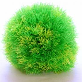 Yusee Roślina - Gałęzatka Zielona 12cm