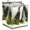 <b>Aquael Fish Shrimp Set DUO 35 - zestaw akwarium 49l</b><br /><br /><p>ZquaelFish & Shrimp SetDUO to w pełni wyposażony zestaw akwariowy służący do zakładania małego akwarium słodkowodnego. I<span>dealnie nadaje się do zakładania krewetkariów, niewielkich zbiorników roślinnych oraz hodowli niedużych ryb. Dzięki swym wyjątkowym walorom estetycznym stanowi unikalną ozdobę każdego nowoczesnego wnętrza.</span></p>
