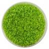 <b>Eco Plant - Hemianthus Cuba - InVitro duży kubek</b><br /><br /><p>Popularna roślina trawnikowa. Szybko tworzy gęsty zielony dywan na podłożu akwarium. Wymaga dobrego oświetlenia, nawożenia oraz dawkowania CO2. Polecana jedynie doświadczonym akwarystom.Ilość sadzonek roślin w kubku 14 - 50szt.</p>