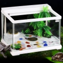 SunSun HGG-380 - Akwa-Terrarium dla żółwia 27l