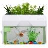 <b>SunSun Aqua&Garden Hydroponics - hydroponika 4l</b><br /><br /><p>Mała domowa hydroponika przeznaczona do hodowli roślin ozdobnych oraz o przeznaczeniu do spożycia. Posiada wszystkie niezbędne elementy oraz dodatkowo wyposażona jest w efektowne podświetlenie LED. WAqua&Garden Hydroponics możesz też trzymać małe ryby, np: złotą rybkę lub bojownika.</p>