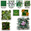 Bello Plant - Pearl Flat Plant - roślina XL do obrazów 3D