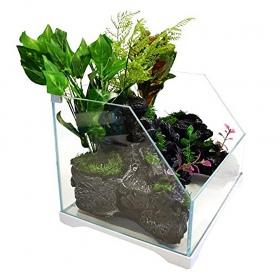 <b>SunSun Aqua Paludarium 30l - zestaw paludarium</b><br /><br /><p>Paludarium to najnowszy krzyk mody, który doceni każdy akwarysta i miłośnik botaniki. Nowe spojrzenie na akwarystykę i florystykę domową w formie paludarium, łączącego w sobie te dwie pasje, zawróci w głowie wszystkim, którzy cenią sobie naturę i to bez wyjątku. Aby mieć piękny zielony zakątek, nie musisz się znać na akwarystyce, terrarystyce czy choćby na utrzymaniu roślin w warunkach domowych.</p>