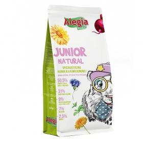 <b>Alegia - Junior Natural - pokarm ziołowy dla młodych świnek morskich 650g</b><br /><br /><p>Pokarm złożony z suszonych ziół, kwiatów, warzyw i owoców. Dieta opracowana specjalnie dla potrzeb młodej świnki morskiej do 6 miesiąca życia.</p>
