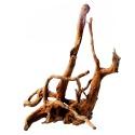 Malaysian Driftwood XXL - korzeń 70 - 110cm
