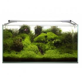 Aquael Leddy Slim 36W Plant 100-120