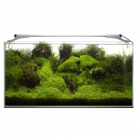 Aquael Leddy Slim 10W Plant 50-70