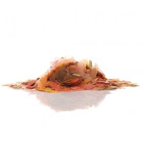 <b>Tropical Supervit 100ml - pokarm w płatkach</b><br /><br /><p>Wieloskładnikowy pokarm przeznaczony do codziennego karmienia wszystkich ryb ozdobnych. Zróżnicowany skład posiada obfite właściwości smakowe i spożywcze. Zapewnia doskonałą zbilansowaną dietę. Rozważany TropicalSupervit 100ml - 20g</p>