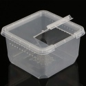 Terrario Insect Box Compact - plastikowe terrarium 12x12x7cm