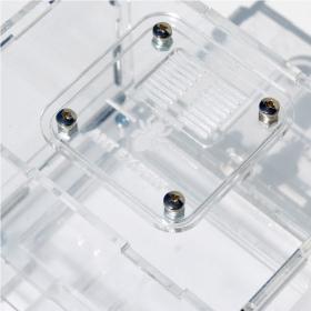 Ant Expert Lost Tunnels - formikarium akrylowe profesjonalne